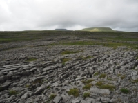 Limestone pavements beyond Moughton Scars