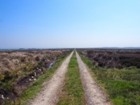 Following the shooting track over Dallowgill Moor