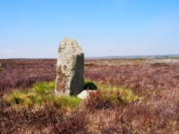 Possibly the Old Wife stone