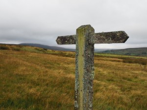 A lichen covered footpath sign
