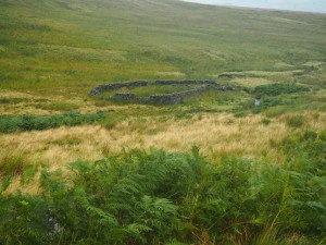 The sheepfold in Lead Up Gill