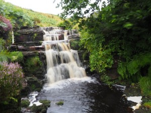 The waterfall above Great Force