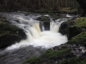 A small waterfall on Deepdale Beck as it passes through Mill Wood