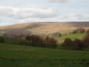 Looking back at Rise Hill