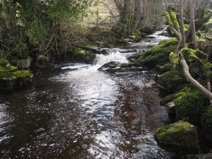 Where I crossed Deepdale Beck