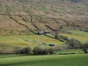 Looking down to the house at Mire Garth
