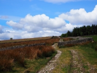Heading on to the moor via Kex Gill Road