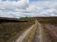 Crossing the southern edge of Hall Moor on Kex Gill Road