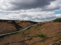 Looking towards the top of the A59 as it crosses Blubberhouses Moor