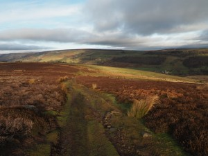 Following the bridleway back down into the valley