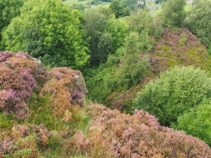 Looking down from the crags near Crag Top