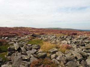 The ancient cairns on Low Bradley Moor
