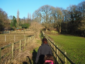 The path leading from the canal to Morton Beck