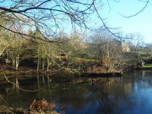 The pond at Holroyd Mill