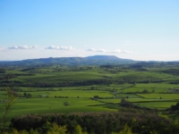 Looking towards Pendle Hill