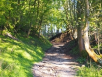 The bridleway climbing out of Flasby