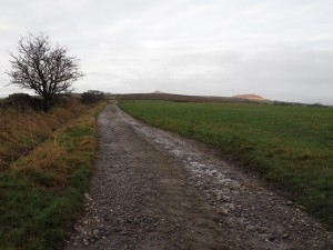 The track leading on to Flasby Fell from Bog Lane