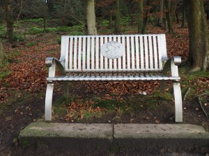 The memorial bench to Helen Handley