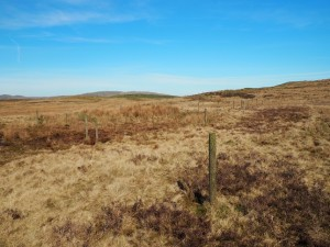 Random posts on Firbank Fell