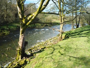 The River Lune