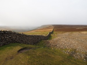 The wall running above Fremington Edge