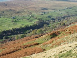 Looking down into Arkengarthdale