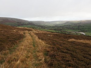 Following the track across Riddings Rigg