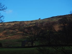 Looking up at Thrope Edge
