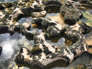 Rock pools at Ghaistrill's Strid