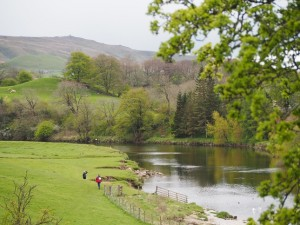 The Wharfe at Grassington with Cracoe Fell in the distance