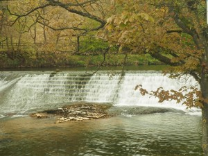 One of two weirs above Linton Falls