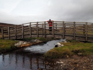 Bridge over Mossdale Beck