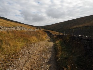 The track leading to the head of Arten Gill