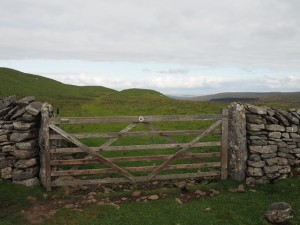 The Pennine Bridleway below the top of Wold Fell