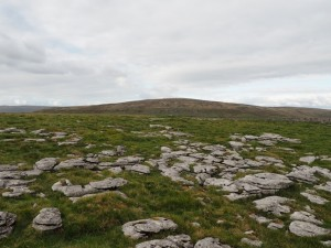 Weathered limestone on Wold Fell