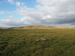 The top of Wold Fell looking towards Great Knoutberry Hill