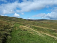 The thin path contouring around Whaw Moor