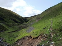 Approaching the ravine in Little Punchard Gill