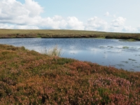 The small tarn I visited on my way to Great Pinseat