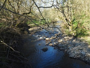 The River Cover from St Simon's Bridge