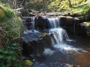 A small waterfall in Caldbergh Gill