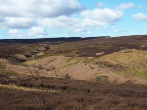 The view up Ulfers Gill from the Red Way towards Great Roova Crags