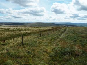 Following the fence off Great Shunner Fell
