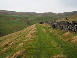 The grassy track from East Scale Lodge