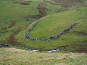 A ruined sheepfold in Park Gill