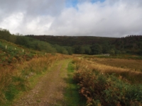 The path leading down to the foot of Blea Gill
