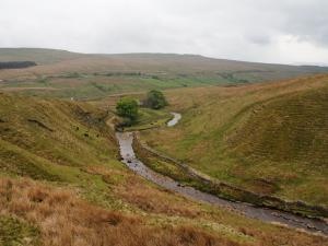 Grisedale Beck above Clough Force