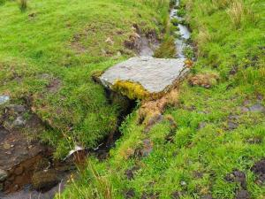 A tiny slab bridge below Moor Rigg