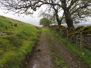 The track above Grisedale Brow