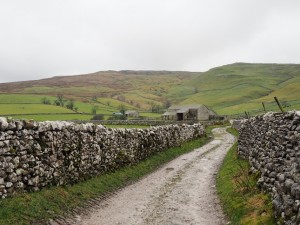 The lane leading towards Kirkby Fell